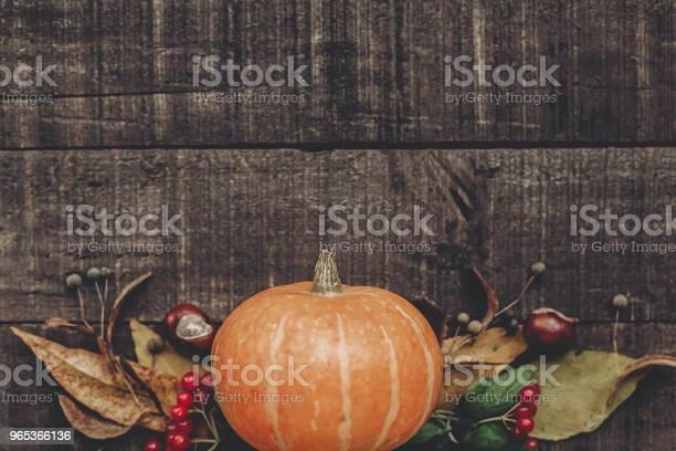 Halloween Lub Dziękczynienia Koncepcji Kartka Z Życzeniami Płaskie Leżał Piękna Dynia Z Liśćmi I Jagodami Na Rustykalnym Drewnianym Tle Widok Z Góry Miejsce Na Tekst Przytulny Jesienny Nastrój Jesienne Wakacje - zdjęcia stockowe i więcej obrazów Blogować