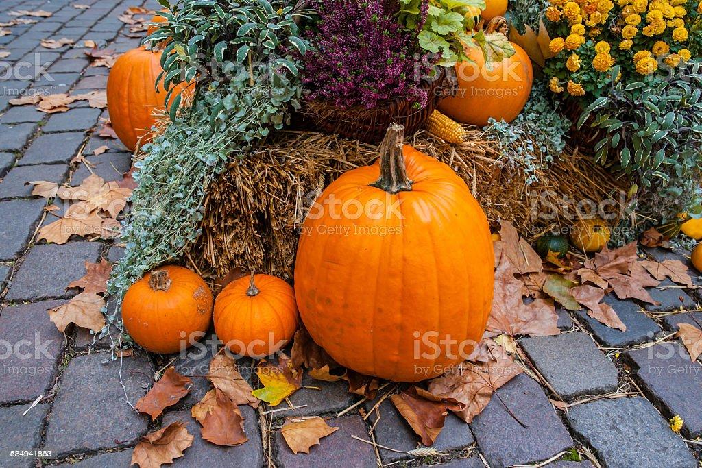 Halloween ornament at autumn stock photo