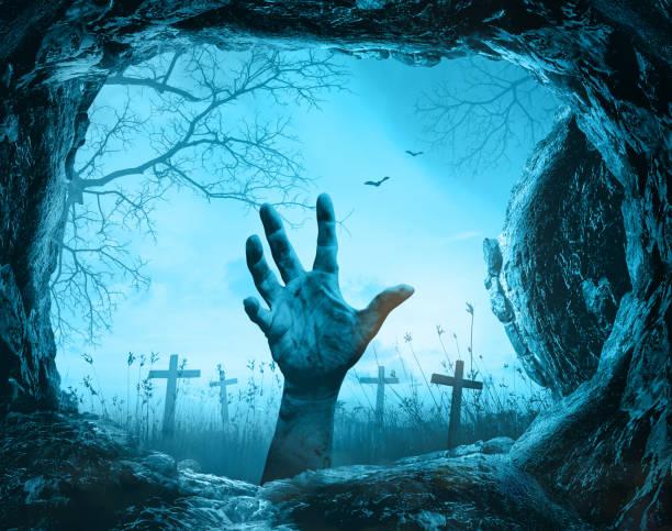 halloween - plants of zombies stock-fotos und bilder