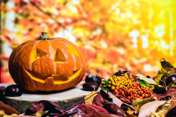 Halloween pumpkin against autumn background with colorful leaves and berries stock photo
