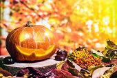 カラフルで秋の背景にハロウィンかぼちゃの葉し、果実