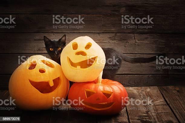 Halloween pumpkin and black cat on wooden background picture id589973076?b=1&k=6&m=589973076&s=612x612&h=nio5fntmpqiw tn0mstdzr enbu0ufkrzfs7bo136xu=