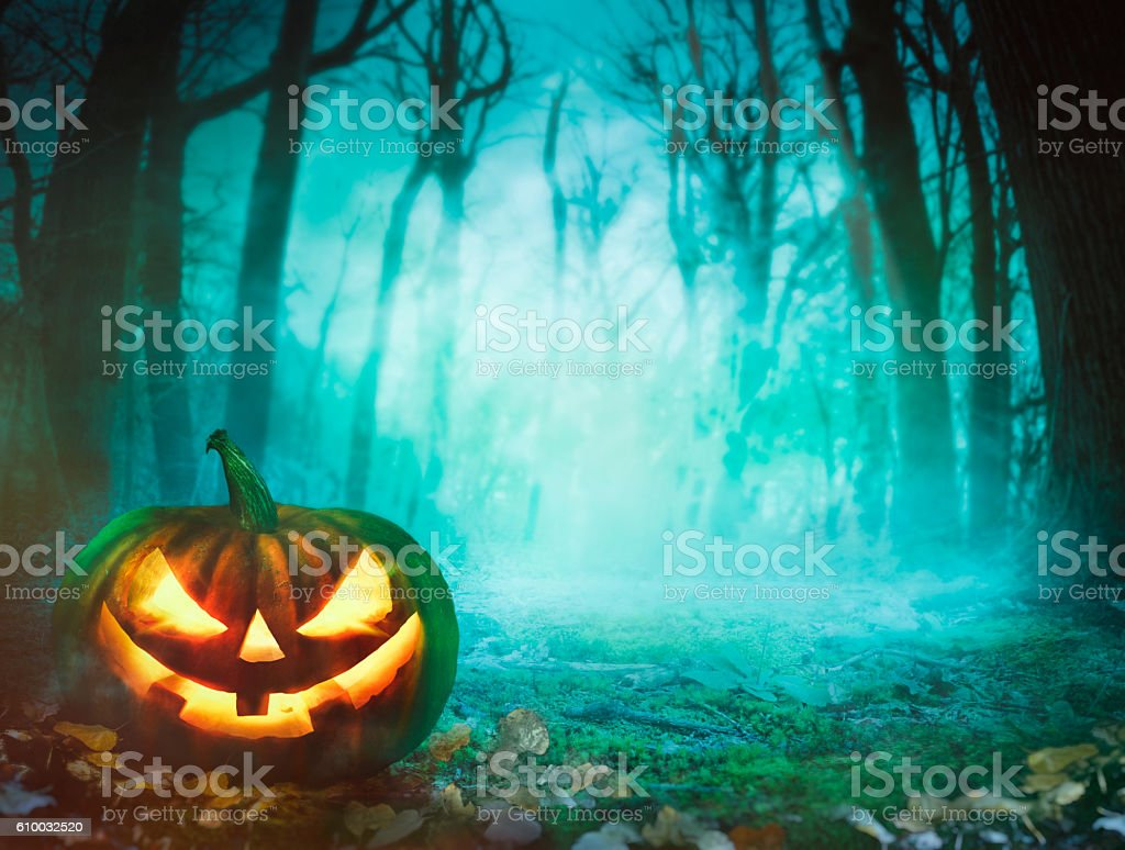 Halloween pumpkin in forest stock photo