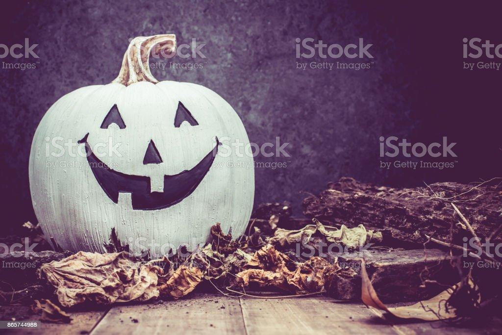 Halloween pumpkin, trick or treat in autumn season stock photo