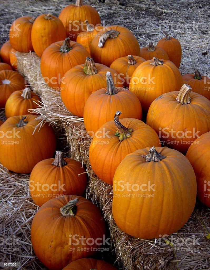 halloween pumpkins 01 royalty-free stock photo