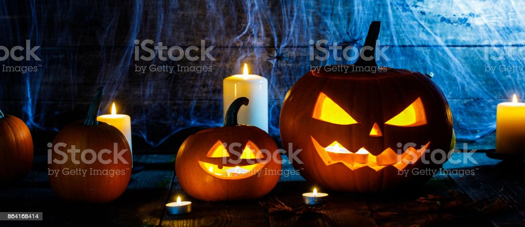 Halloween pumpkins and spiders royalty-free stock photo
