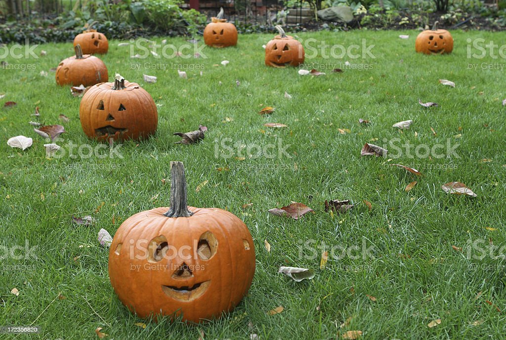 Halloween Pumpkins royalty-free stock photo