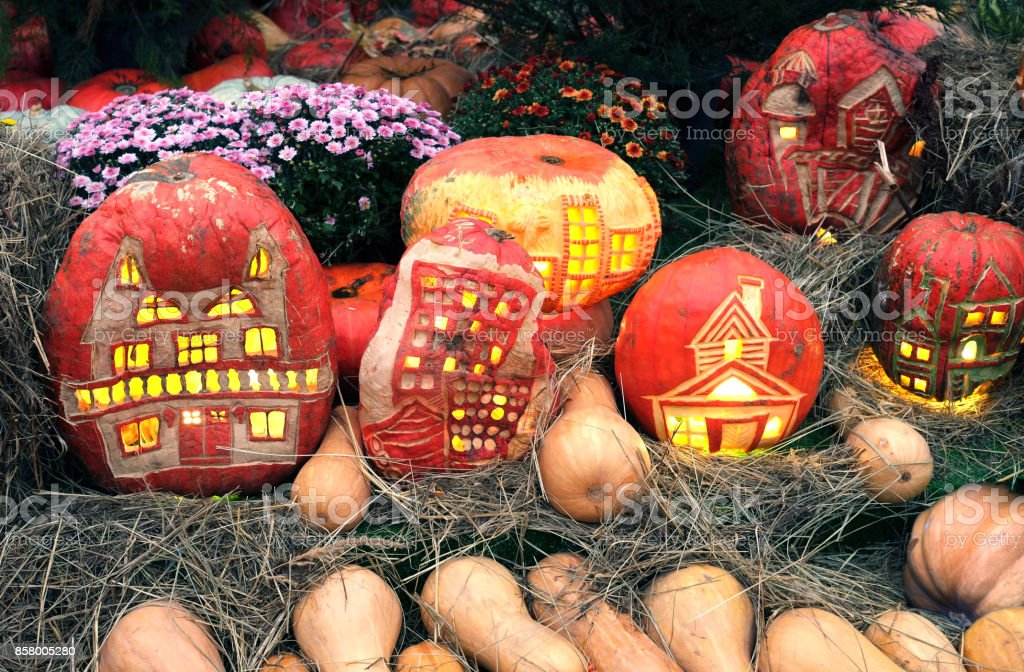 Halloween pumpkins with light inside and still life with lot of flowers and hay stock photo