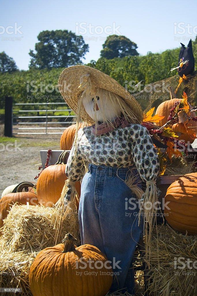 Halloween scarecrow royalty-free stock photo