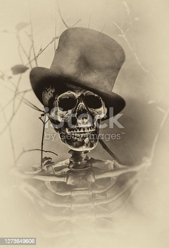 Studio shot of a skeleton in a misty forest,  Halloween character Sepia processed