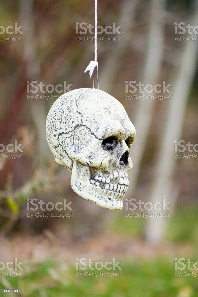 Halloween Skull Decoration royalty-free stock photo