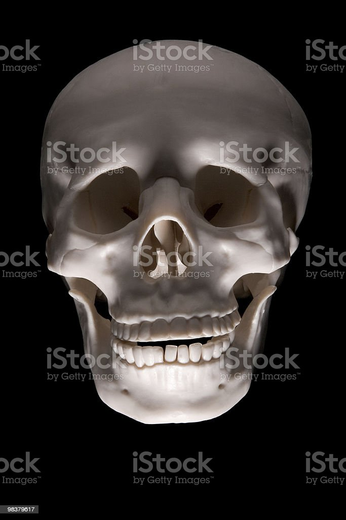 Halloween Skull (clipping path) royalty-free stock photo