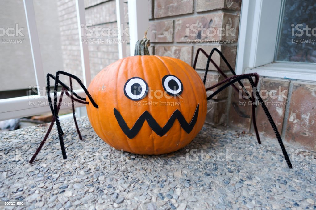 Kürbis Halloween Spinne – Foto
