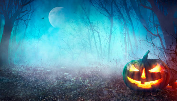 halloween gruselige forest - waldfriedhof stock-fotos und bilder