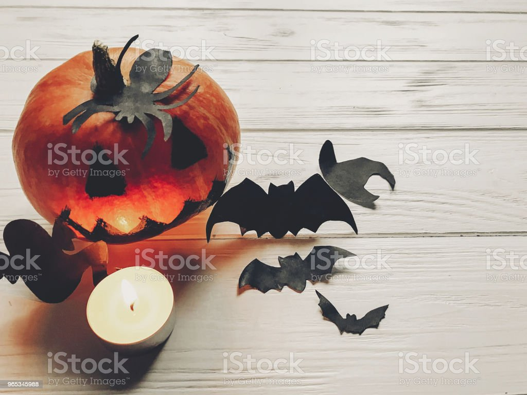 halloween. spooky jack lantern pumpkin with ghost bats and spider black decorations in light on white wooden background. holiday celebration. seasonal greetings. happy halloween concep royalty-free stock photo