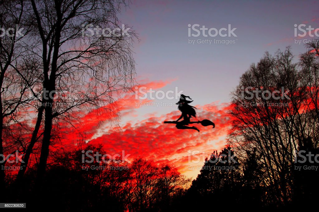 Halloween. The witch flying on the broom with the burning red eyes against the background of the night sky. stock photo