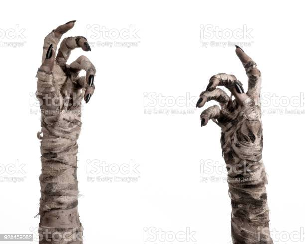 Halloween theme terrible old mummy hands on a white background picture id928459082?b=1&k=6&m=928459082&s=612x612&h=5qiope35oe4waskmmhqbtngj3pytwx0yifjt3ozromm=