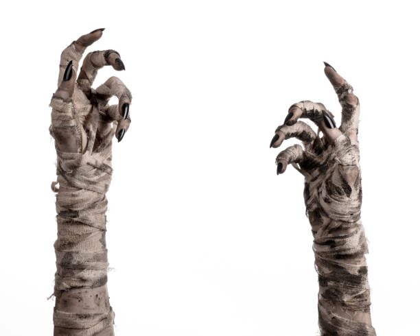 halloween theme: terrible old mummy hands on a white background - monster stock pictures, royalty-free photos & images