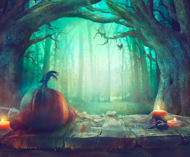 halloween-thema mit kürbissen und dunklen wald. gruselige halloween - waldfriedhof stock-fotos und bilder