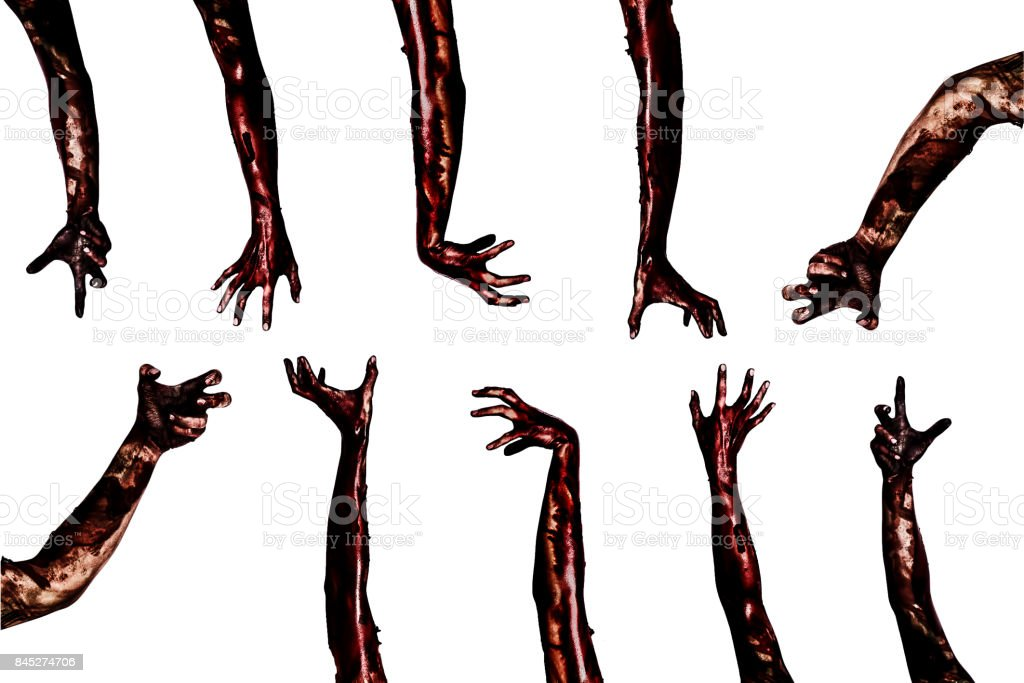 Halloween theme:Blood zombie hands on white background , zombie, demon, killer, maniac with clipping path. stock photo