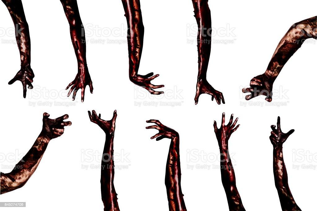 Halloween-Thema: Blut-Zombie Hände auf weißem Hintergrund, Zombie, Dämon, Killer, Maniac mit Beschneidungspfad. – Foto