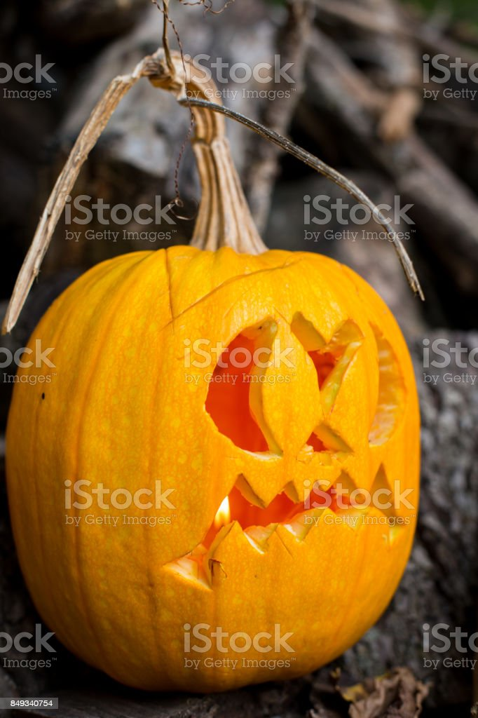 halloween themes autumn halloween jackolantern on autumn wooden