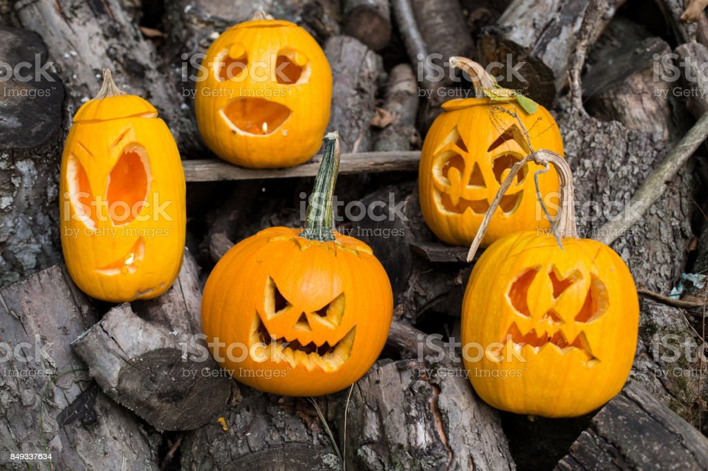 halloween themes composition of five carved halloween pumpkins on