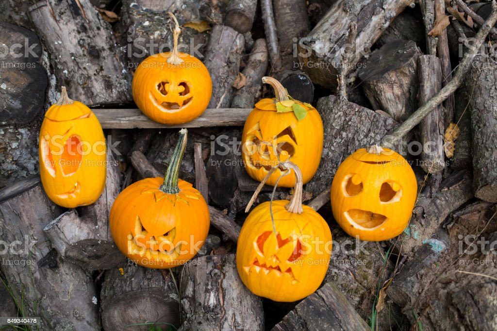 halloween themes composition of six carved halloween pumpkins on