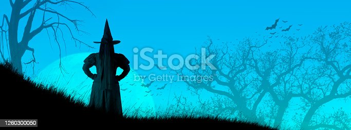 A rear view of a Halloween witch as she stands guard on a grassy hillside as a full moon rises in the distance.  Bare trees and a colony of bats are silhouetted against the blue evening sky.
