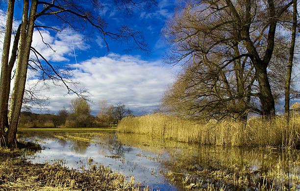 Hallwilersee – Foto