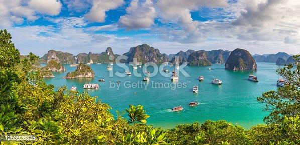 istock Halong bay, Vietnam 1253926325
