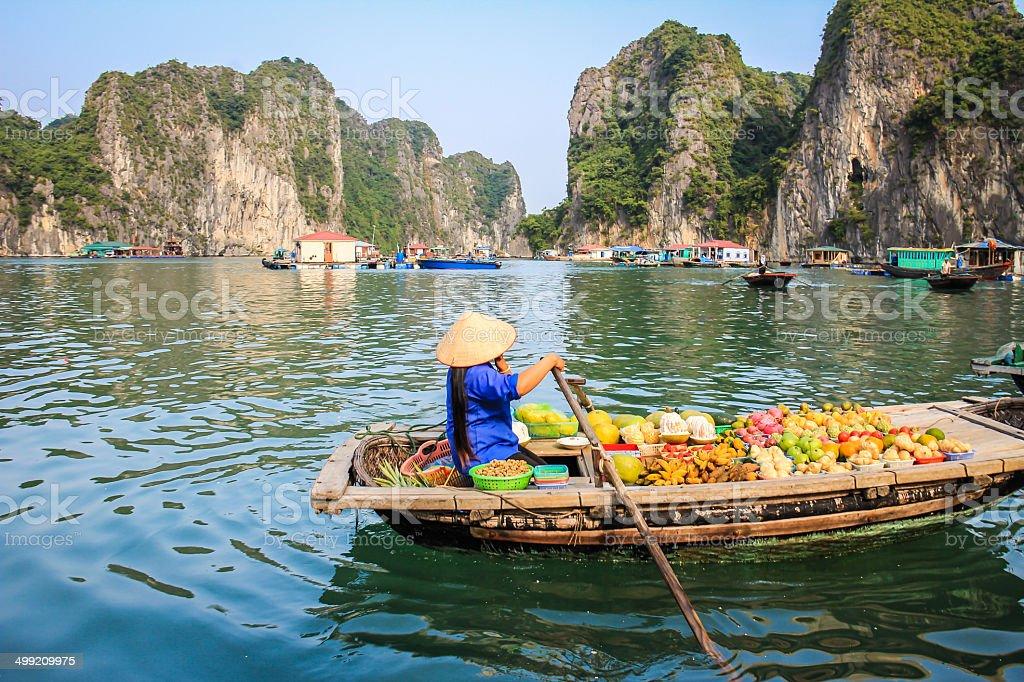 Bahía de Halong Vietnam - foto de stock