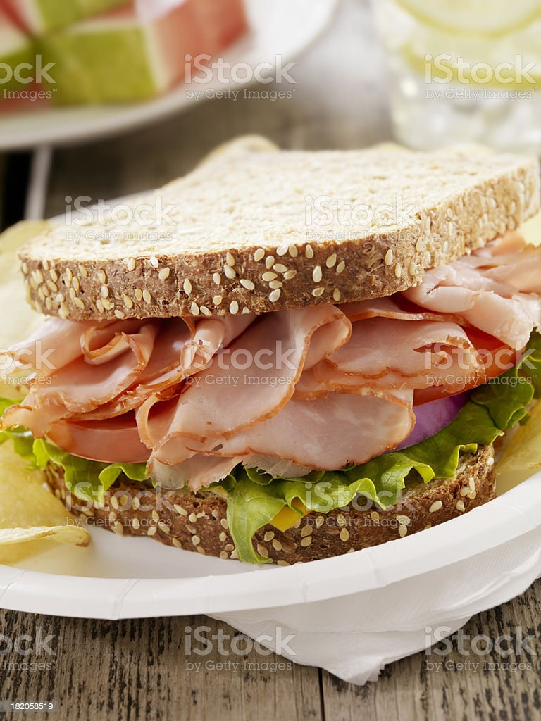 Ham and Cheese Sandwich at a Picnic royalty-free stock photo