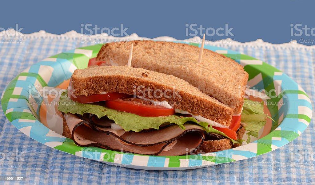 Ham Sandwich on Picnic Plate stock photo
