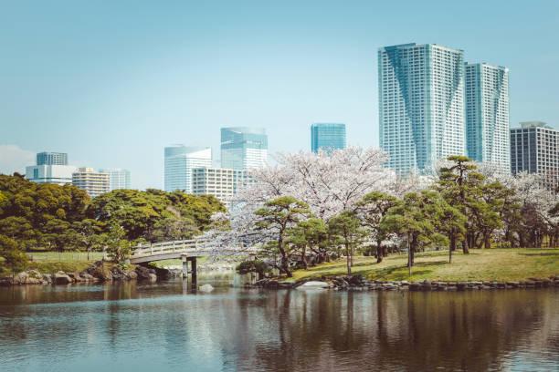 Hama-Rikyu-Garten in Tokio, japan – Foto