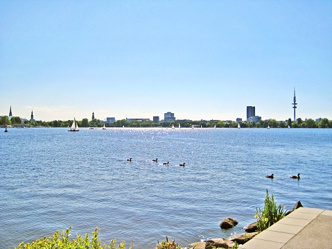 Hamburg Aussenalster / Alster with city skyline