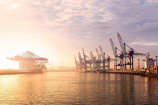Hamburger Hafen Container-Terminal – Foto