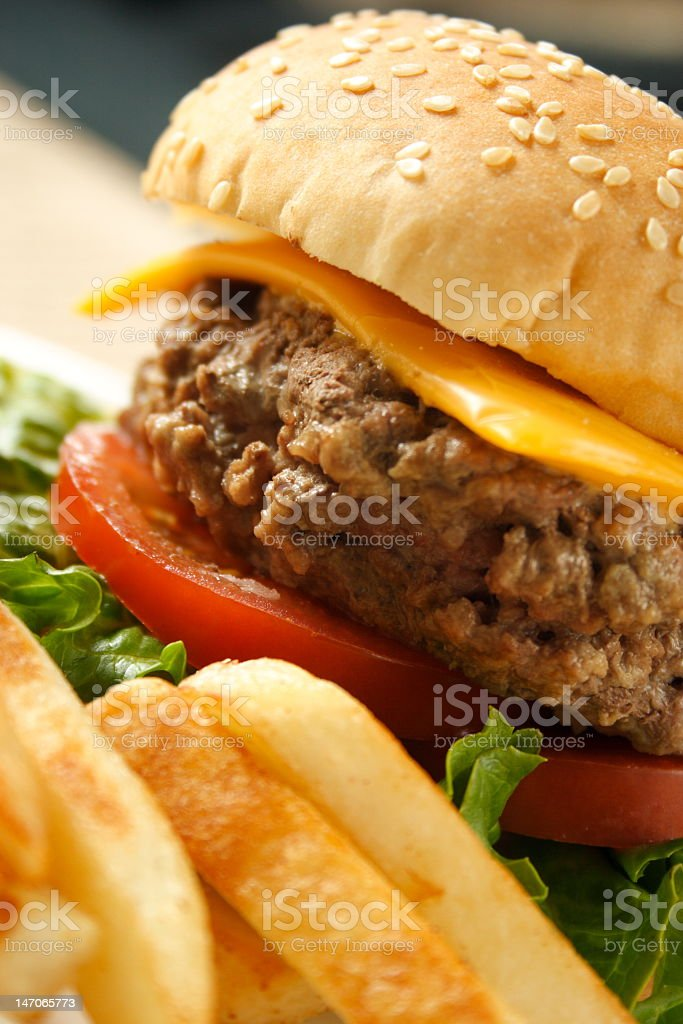 Hamburger and fries royalty-free stock photo