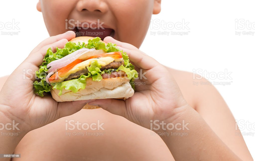 Hamburger in obese fat boy hand stock photo