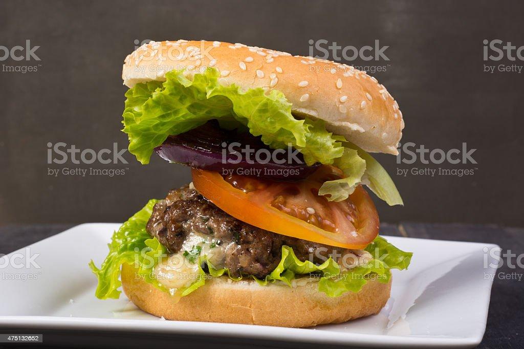 Hamburger foto de stock libre de derechos