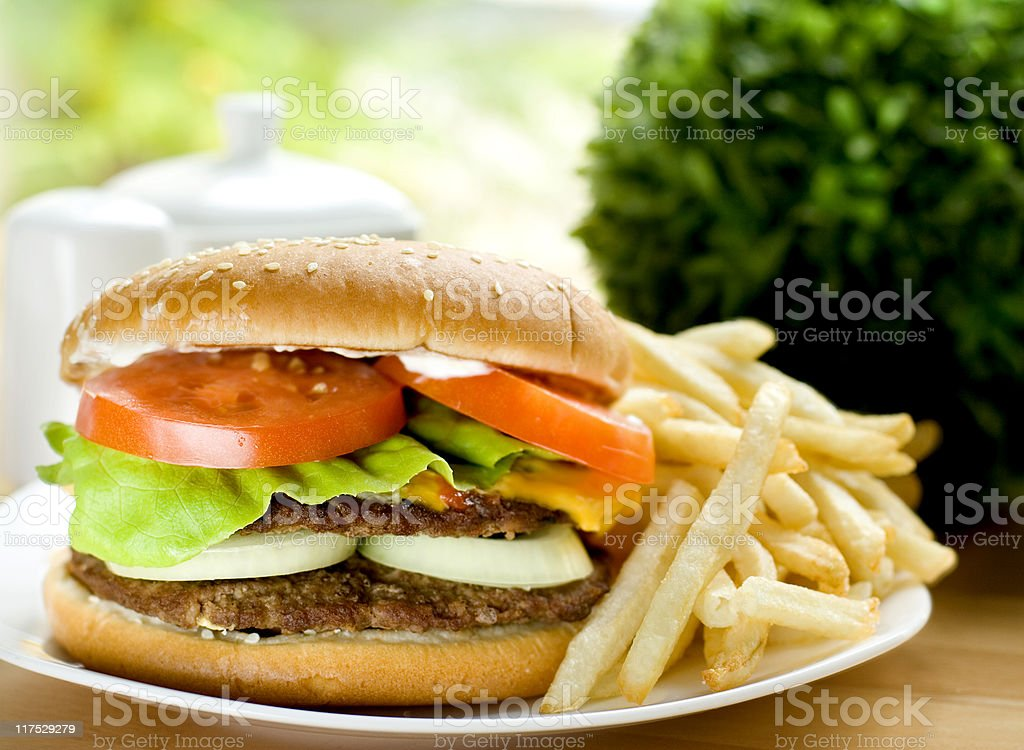 hamburger with fries royalty-free stock photo