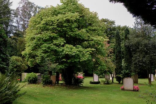 Hamburg's Cemetery Ohlsdorf