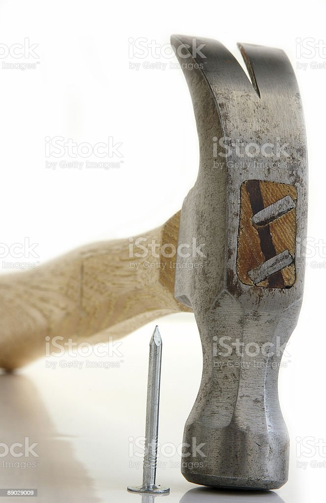 Hammer head royalty-free stock photo
