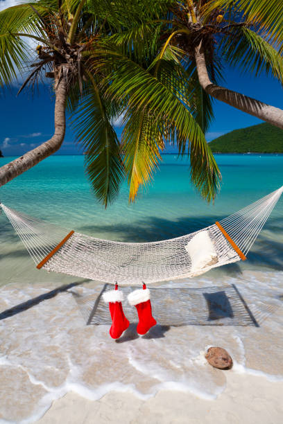Hammock and palm trees with Christmas stockings on a tropical beach