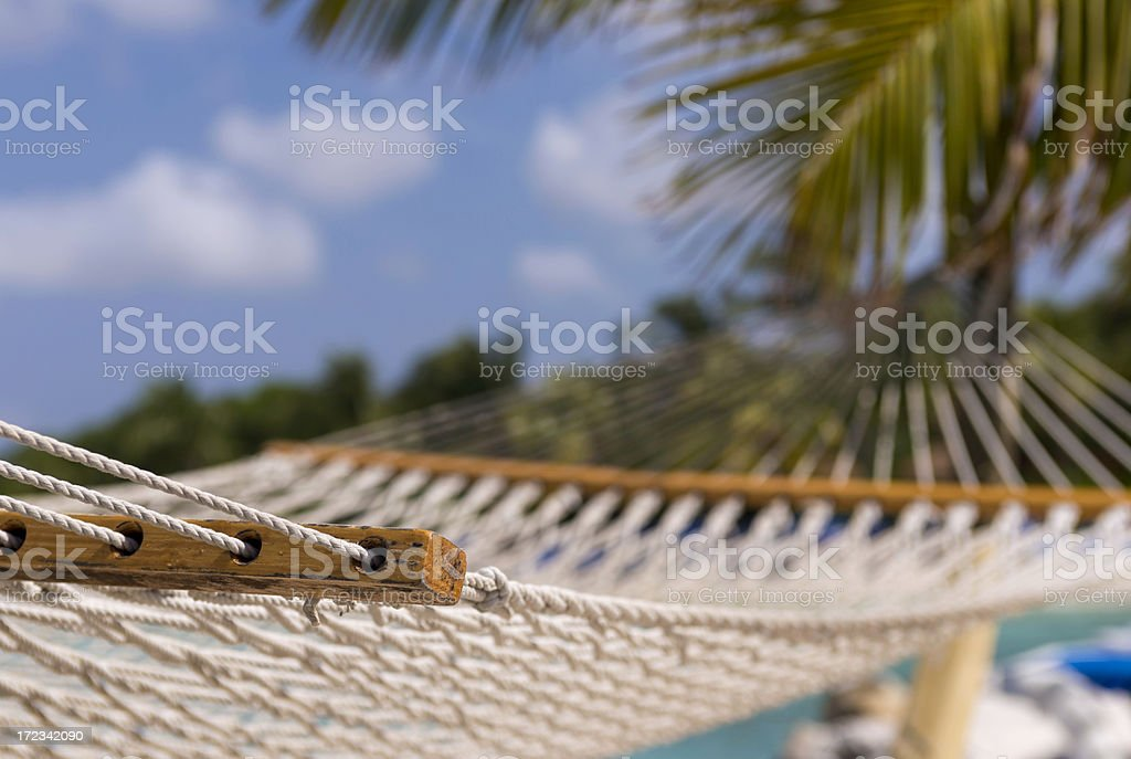 Hammock and Palmtree royalty-free stock photo