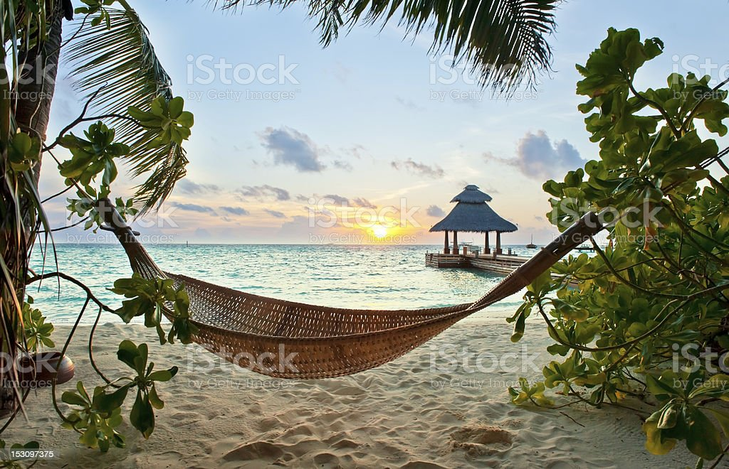 Hammock and sunset stock photo