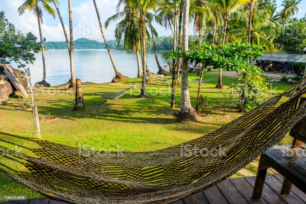 Hammock and tropical bech view stock photo