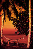 Hammock between two palm trees at sunset along the Kerala Backwaters in India.