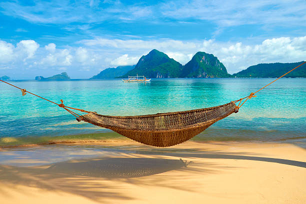 hammock at the beach - hangmat stockfoto's en -beelden