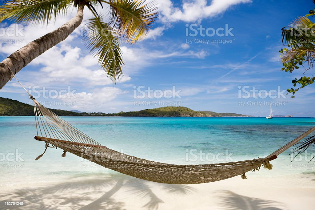 hammock between palm trees on untouched beach in the Caribbean stock photo